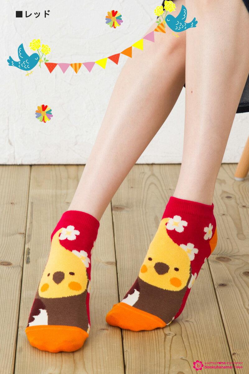 KOTORITACHI ソックス オカメインコ(フロント×横向き)×花柄 (全3色 レッド・ブルー・オレンジ) 小鳥 コトリタチ かわいい おしゃれ レディース アクセント socks ladies short