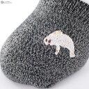 接触冷感 フットカバー (アザラシ刺繍)(23-25cm)(かかとすべり止め) パンプスイン レディース ショートソックス footcover socks ladies