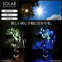 ソーラーライト 屋外 人感センサー 明るい LED 5000K/8000K 電源不要 簡単取付け 常夜灯 太陽光電池 ガーデン 玄関ライト 白 青 ホワイト 電...