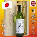 秘蔵わいんアクアヴィタエ 木箱入り 日本ワイン AQUAVITAE
