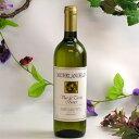 ミケランジェロ イタリア テーブルワイン 白 イタリア産ワイン
