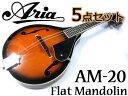 【嬉しい5点セット!】Aria/アリア AM-20 ベーシックモデル フラットマンドリン カントリーミュージックやブルーグラスに!【RCP】..