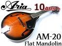 【超お得な10点セット!】Aria/アリア AM-20 ベーシックモデル フラットマンドリン カント