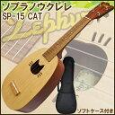 Zephyr/ゼファー SP-15/CAT ケース特別サービ...