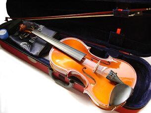 ヴァイオリン バイオリン ステンター