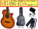 【定番4点セット】ARIA/アリア TG-1/TG1 LVS/ライトヴィンテージサンバースト 小ぶりなアコースティックギター【送料無料】【RCP】【P2】