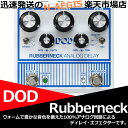 DOD RUBBERNECK ANALOG DELAY【RCP】【P5】