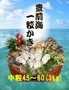 【福岡県産】豊前海 一粒牡蠣 殻付き かき/牡蠣 3kg(中粒/45〜60個入り)【産地直送】