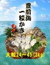 【福岡県産】豊前海 一粒牡蠣 殻付き かき/牡蠣 3kg(大粒/24〜45個入り)【産地直送】