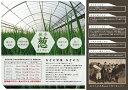 100%有機肥料栽培『マルゲンプレミアム』厳選小葱