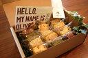 【送料無料】【大分日田スイーツ】OLIVEスコーン 角型スコーン6種類12個ギフト詰め合わせ