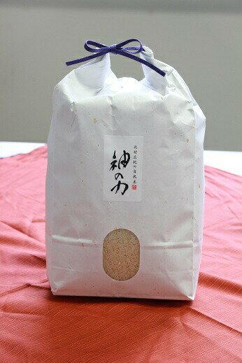 【送料無料】北村広紀の自然米「神の力」白米 5kg