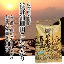 【松本ファーム】浜野浦棚田こしひかり 10kg