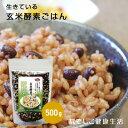 【玄米酵素ブレンド500g(500g×1袋)】厳選した100%国
