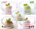 とけないアイス風デザート 5種(バニラ/チョコ/いちご/抹茶/あずき 各35g×10個入)セット - ヤヨイサンフーズ