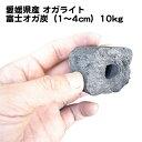 国産オガクズ100% 愛媛県産 富士オガ炭(1〜4cm)10kg