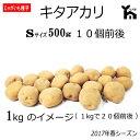 じゃがいも種芋(ジャガイモ)・キタアカリ500g