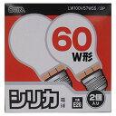 オーム電機 60Wホワイト球2P LW100V57W55/2P