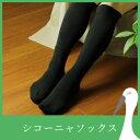 【5%OFFクーポン配付中】【シコーニャソックス 1足組】靴下 着圧 ソックス 日本製 遠