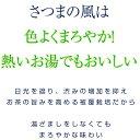 2016年度産【メール便送料無料】お茶 鹿児島茶 さ...