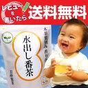 水出し茶【あす楽】【送料無料】水出し番茶ティーバッグ(10g×20)02P04Jul15