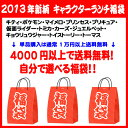 [free shipping!]A character lunch lucky bag ticket available by oneself! [easy  _ packing] [comfortable  _ expands] [easy  _ Messe input] [RCP]