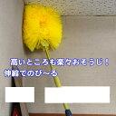 かべ 天井そうじ(はたき・埃とり・蜘蛛の巣)