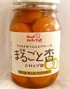 味ロッジ(株) まるごと杏 約450g 2個セット