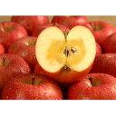 蜜入りサンふじ 5kg(13〜16玉) 冬季限定 【送料込】 / 美しい自然や風土に囲まれた長野県。信州産の食材・郷土食やお土産を、NAGANOマルシェでご紹介。