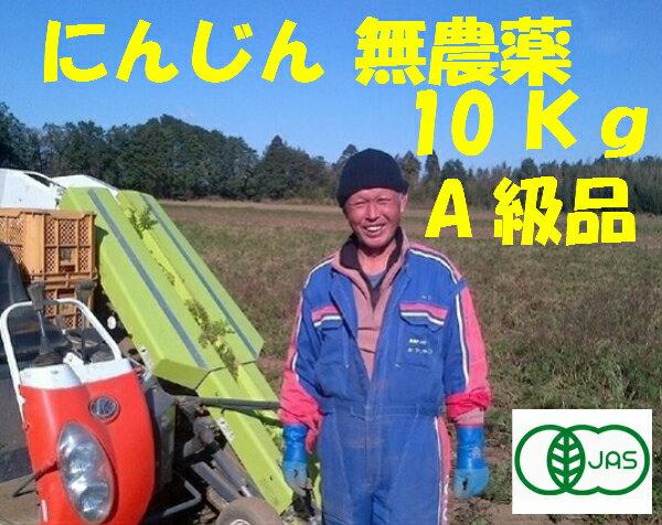 さつまいも 訳あり 5Kg 紅はるか シルクスイートJAS100%規格芋【大きさお任せ】焼き芋に 送料無料 【無農薬】にんじん 無農薬で人気のさつまいも 有機20年以上の農家加瀬農園