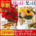 母の日 父の日 長崎カステラ 花ペアギフト hn500 MDJ6 【送料無料・込】【スイーツ】