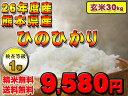 【27年度米】熊本県産 ひのひかり【検査米1等】【送料無料】【精米無料】【玄米】【30kg】【九州の米】02P19Jun15