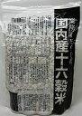 【送料無料】種商 国内産十六穀米 業務用 500g【ポスト便...