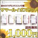 Summer_500500