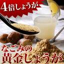 鹿児島産 黄金しょうが粉末 70g生姜 | ジンジャー | パウダー国産 |メール便送料無料