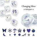 【ゆうメール便OK】ジェルネイルに埋め込みOK♪角度で色が変わる不思議なホログラム『changing silver』選べる18種類