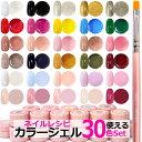 【再入荷!】ベスト30色ネイルレシピカラージェル特別セット ...