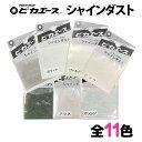 【メール便OK】ピカエース シャインダスト【0214】【RC...