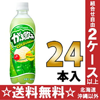 500 ml of 24 Pokka Sapporo swill melon cream soda pet Motoiri []
