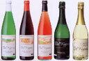 ノンアルコールワイン(ボルドー産)白・赤・ロゼ・スパークリング2種 750ml瓶【お試し】各1... ...