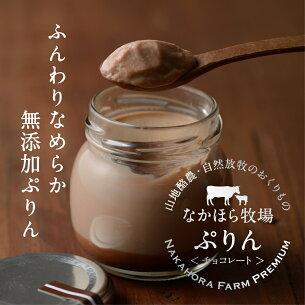 チョコレート 放し飼い ブルーアガベシロップ グラスフェッドミルク フリーレンジエッグ