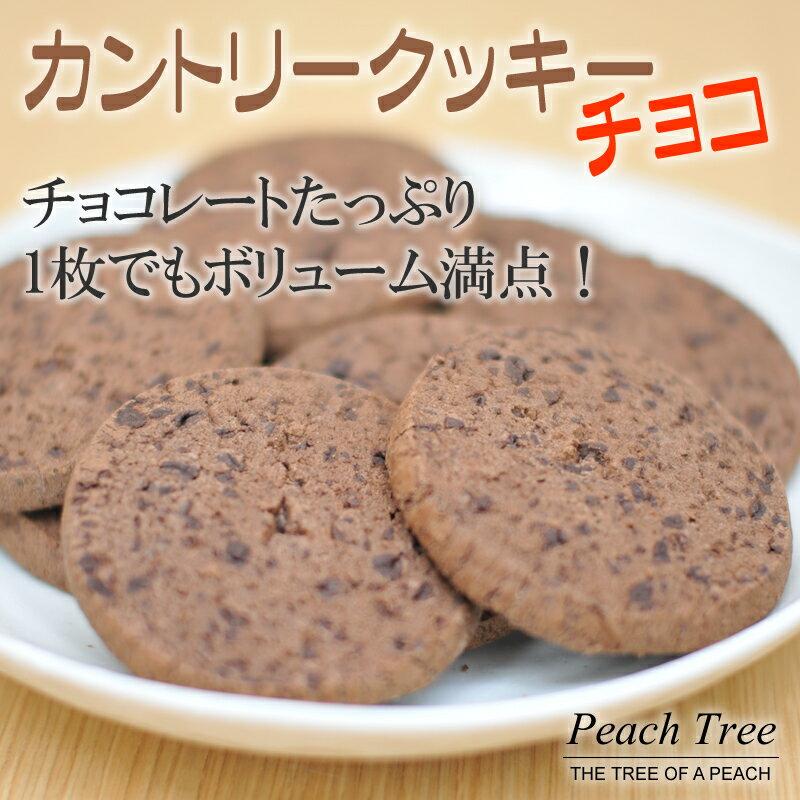 クッキー チョコレート アメリカンクッキー ギフト