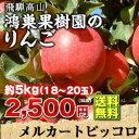 岐阜 飛騨高山産 鴻巣果樹園の 『りんご 約5kg(18〜20玉)』 果物 フルーツ エコファーマー