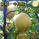 愛媛県中島産 レモン 訳あり 2kg 皮まで美味しい ノーワックス・防腐剤不使用 サイズ不揃い