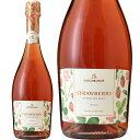 ドクターディムース カトレンブルガー ストロベリー スパークリングワイン 750ml 苺 いちご 発泡 フルーツワイン ドイツ
