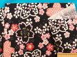 綿和柄プリント生地さくら・黒×ピンク
