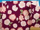 綿和柄アムンゼン生地桜 紫×ピンク系