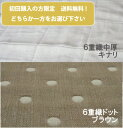 [ABA9]【ネコポス送料無料】初回の方限定6重織ガーゼ*ガーゼ生地おためしセット 約70x50cm