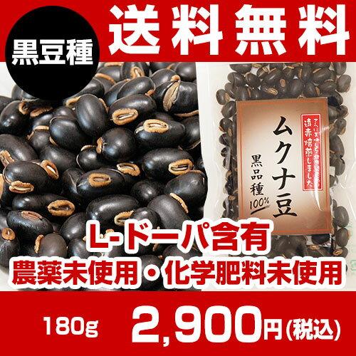 【送料無料】黒ムクナ豆焙煎済み180g