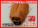 【ドナイヤ】硬式内野手用 サイズ6右投げ【湯もみ&送料無料】05P09Jul16